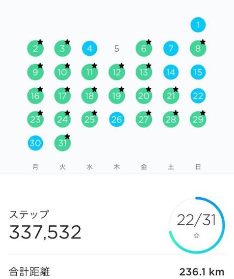 201912-1ヶ月間で歩いた歩数